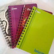 cuadernos argollados e